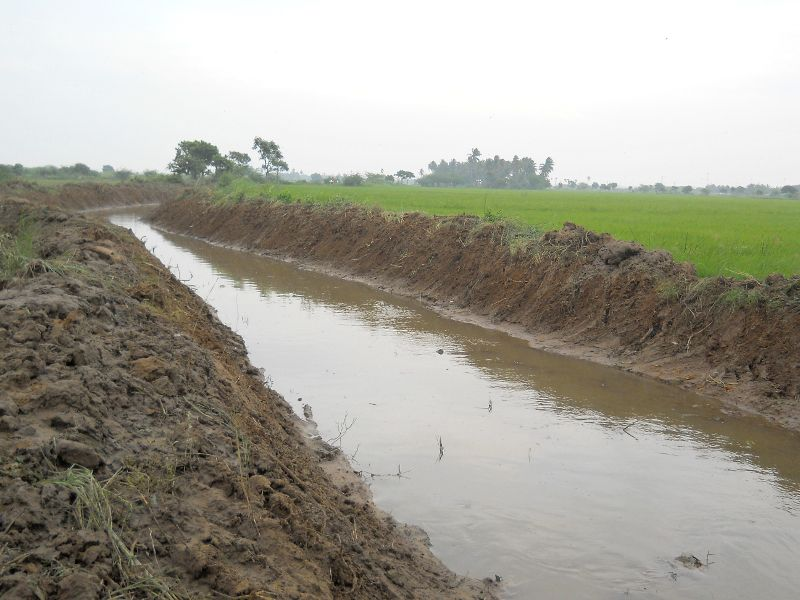 irrigation ditches with water